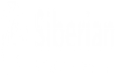 Install Siberian MAE script and Wordpress theme using Plesk dashboard
