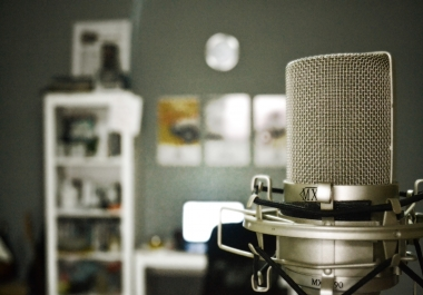 Seeking for Voice Over - Sales Pitch