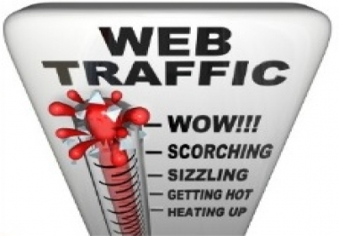 I want to buy regular website traffic of all kinds