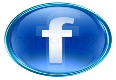 Need 2.5k facebook like on 1 website