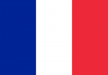 I want to Target traffic from Google. Fr,  and particulary from FRANCE