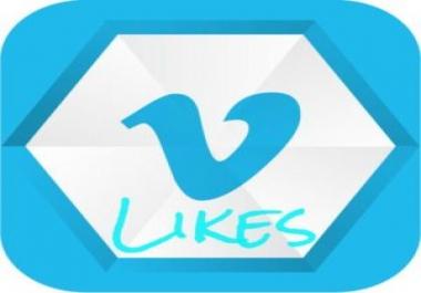 Vimeo 500 Likes and 500 Followers