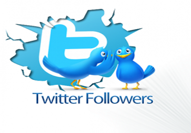 I will provide you 3000 real active Twitter service for