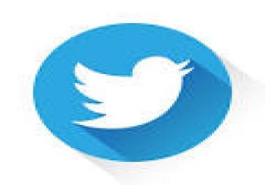 100 Custom Tweets Twitter