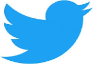 I need 10000 custom twitter TWEET from usa accounts