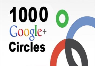 need 1000+ Google Circle followers