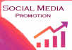 Social Media Promotion Package - Followers