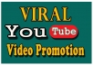 I will do organic video promotion through social media