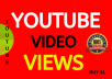 Super Fast Video Views Non-drop Lifetime Guarantee