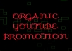 Organic video promotion with real and active views