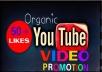 Add Super Fast,HQ,Non Drop video Promotion