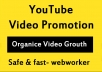Organic YouTube video Promotion and Marketing in 24 Hours