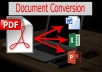 I will make conversion pdf to Word, Excel or PPT