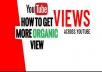 Organic YouTube video viral high quality none drop and lifetime guaranteed