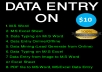 I'll do any kind of DATA ENTRY in Excel Sheet, Copy-Past, Data collect from Online