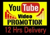 Life time guaranteed High retention Youtube video viwse marketing VIa Google adword