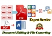 I will convert 10 pages pdf to word or excel, word or excel to pdf in 1 day