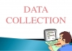 I can do Data collection and analysis
