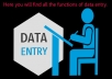 I can give you all kinds of data entry work.
