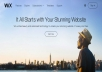 I'll design a dynamic Wix/wordpress website