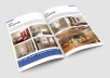 Do any Adobe InDesign Project ,brochure,business proposal and annual report