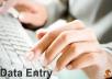 data entry,data analysis, data mining,conversion