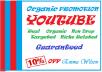 Organic Youtube Video Promotion Social Media Marketing