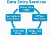 ALL TYPE OF DATA ENTRY WORKS ARE WELCOME !
