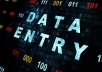 data entry: Fast, proficient and accurate