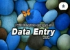 Expert in all types of Data entry work