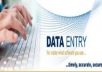 DATA ENTRY WORK IN MS WORD .MS EXCEL IMAGE TO PDF, MS WORD TO PDF