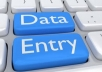 Any kind of Data entry work ,My Services List: * Data Entry * Manual Typing * Retype Scanned File