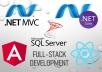 Full stack web application design and development