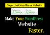 Do wordpress speed optimization and improve gtmetrix, google page speed score