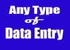 Any type of Data Entry, copy paste, Pdf image to convert doc, excel
