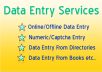 Data Entry Services,Online/Offline Data Entry, Numeric/Captcha Entry