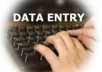 I will do all types of dataentry works