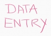 Highly capable and meticulous Data Entry Operator with an excellent record of accuracy and client sa
