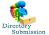 75 Directory Submission For Your Website