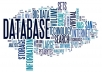 I will design erd and database using oracle mysql ms access