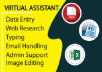 personal virtual assistant for data entry and excel hero