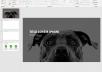 I will design a premium business powerpoint presentation