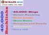 Supply 40,000 Blog comments backlinks for your website