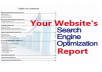 Full SEO Report (Refering, Backlinks, TLDs, Keywords)