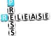 write a high quality Press Release %%%%