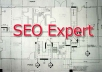 give You a Professional SEO Conlsutation using my 5+ Years of Experience on Keyword Research, Creative Backlink Strategy