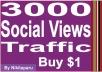 Instantly add 3000 Social Views Traffic