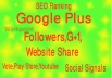 provide 125 Google Circle follow to your Plus page or profile
