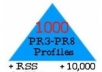 I-will-make-link-pyramid-1000-PR3-PR8-profiles-and-10-for-13