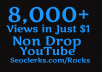 Super Fast 8000+ High Quality Youtube views